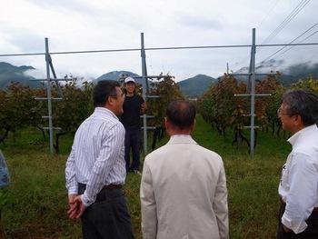 黒潮会・甲州ワイン旅(2011.10.15) 11